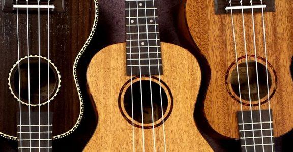 Kupno pierwszego ukulele – na co zwrócić uwagę wybierając budżetowy instrument?