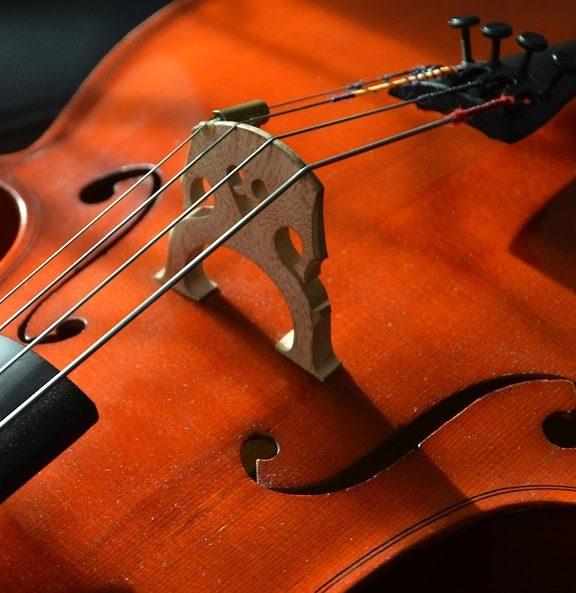Wybór strun skrzypcowych dla początkujących i profesjonalistów