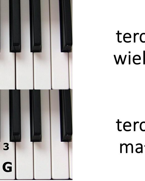 Nauka gry na keyboardzie. Metody ćwiczenia na keyboardzie.