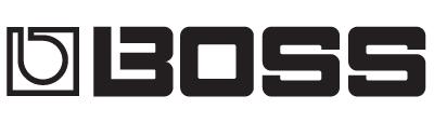 Logo firmy BOSS