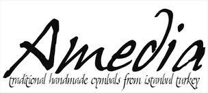 Logo firmy Amedia