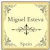 Miguel Esteva