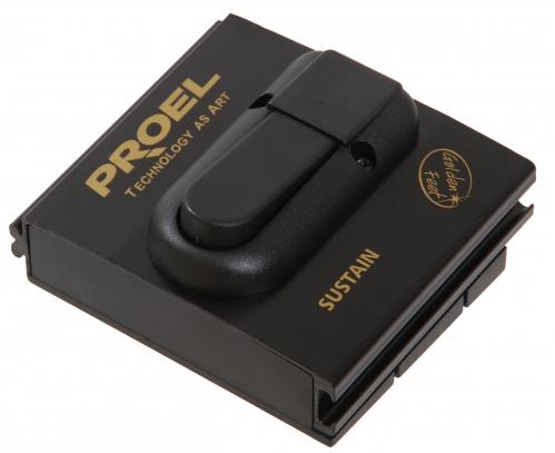 Proel GF 24 pedał (alu) przełącznikowy / sustain (kabel 2m)
