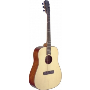 James Neligan LIS-D gitara akustyczna