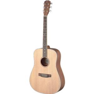 James Neligan ASY-D LH - gitara akustyczna, leworęczna
