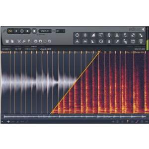 Image Line Edison (FL Studio/VST) program komputerowy, wersja elektroniczna