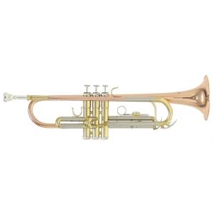 Roy Benson (RB701075) Bb-Trompete TR-202G