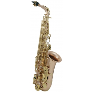 Roy Benson (RB700613) Saksofon altowy w stroju Eb AS202G