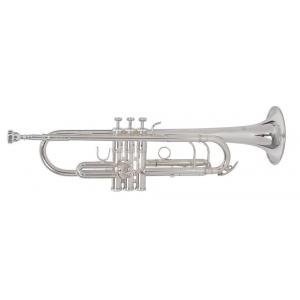 Roy Benson (RB701086) Bb-Trompete TR-403