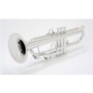 pTrumpet (700636) Trąbka hyTech kolorowane na srebrno