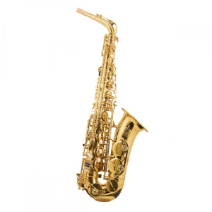 Trevor James 3730G saksofon altowy, lakierowany (z futerałem)