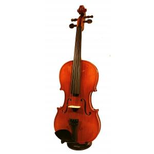 Strunal Academy Udine 175W mod. Stradivari czeskie  (...)