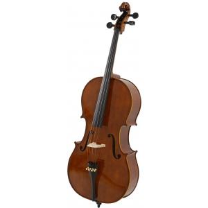Strunal 4/17WE Academy Salzburg - czeska wiolonczela  4/4