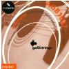 Galli AGB 1047 -  struny do gitary akustycznej
