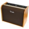 Fender Acoustic 100 wzmacniacz gitarowy 100W