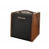 Richwood RAC 50 wzmacniacz do instrumentów akusytycznych