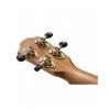Baton Rouge V8 C RDBL ukulele koncertowe