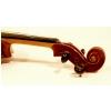 Strunal Academy Parma 205W mod. Guarnerius czeskie skrzypce koncertowe 4/4