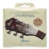 Ibanez IACSP61C struny do gitary akustycznej 10-47 Phosphor Bronze