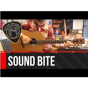Ibanez AW 3050 LG gitara akustyczna